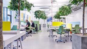 MEC,Malmö,Sweden,USG Donn T24,Juul & Frost Arkitekter,Wihlborgs Fastigheter,Intermontage AB,ROCKFON Sonar,X-edge,600x600,white